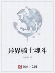 《异界骑士魂斗》作者:洛晓风