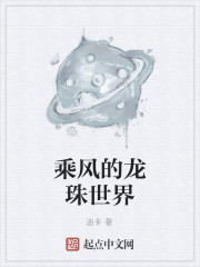 《乘风的龙珠世界》作者:迪卡