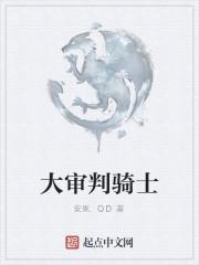 《大审判骑士》作者:安東.QD