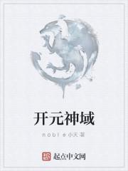 《开元神域》作者:noble小天
