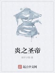 《炎之圣帝》作者:枫宇夕阳