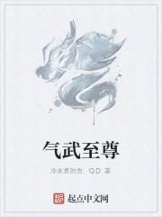 《气武至尊》作者:冷水煮的鱼.QD