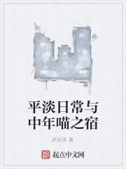 《平淡日常与中年喵之宿》作者:达芬淇