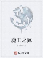 《魔王之翼》作者:樱莲枫落