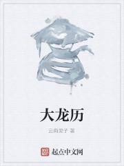 《大龙历》作者:云南梁子.QD