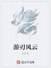 《游刃风云》作者:拾春
