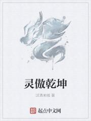 《灵傲乾坤》作者:过滇米线