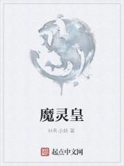 《魔灵皇》作者:HR小妖