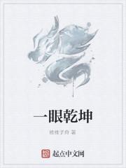 《一眼乾坤》作者:维维子舟