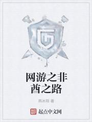 《网游之梦幻骑士》作者:燕冰翔