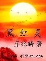 《黑红灵》作者:齐兆麟