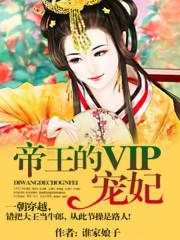 帝王的vip宠妃