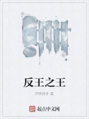 《反王之王》作者:浮世贤士