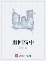 《重回高中》小说封面