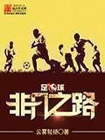 足球:非凡之路