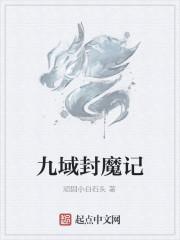 《九域封魔记》小说封面