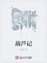 《葫芦记》作者:王葫芦