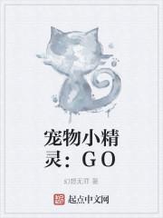 宠物小精灵:GO