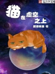 猫在虚空之上