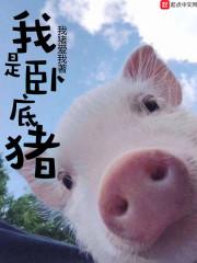 我是卧底猪