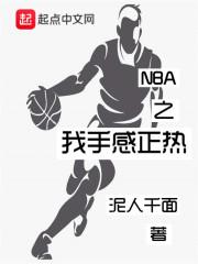 NBA之我手感正热