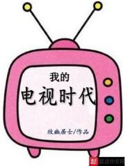 我的电视时代