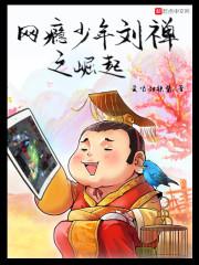 网瘾少年刘禅之崛起